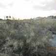 Photo #3 Residential plot for sale in Cyprus, Aradhippou