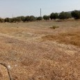 Photo #11 Detached House for sale in Cyprus, Pyla