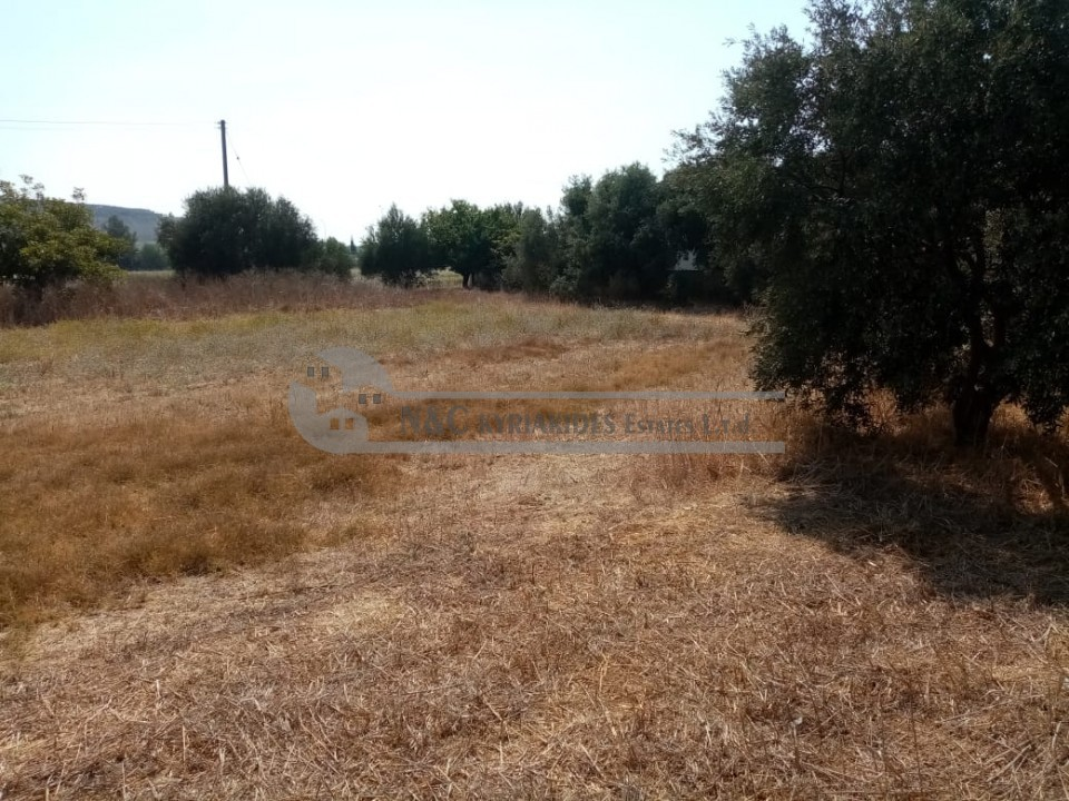 Photo #12 Detached House for sale in Cyprus, Pyla